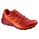 Buty Salomon Sense Ride L39849000