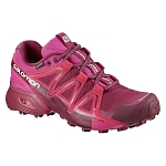 Buty Salomon Speedcross Vario 2 GTX W L401256