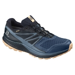 Buty Salomon Sense Escape GTX W L40678700